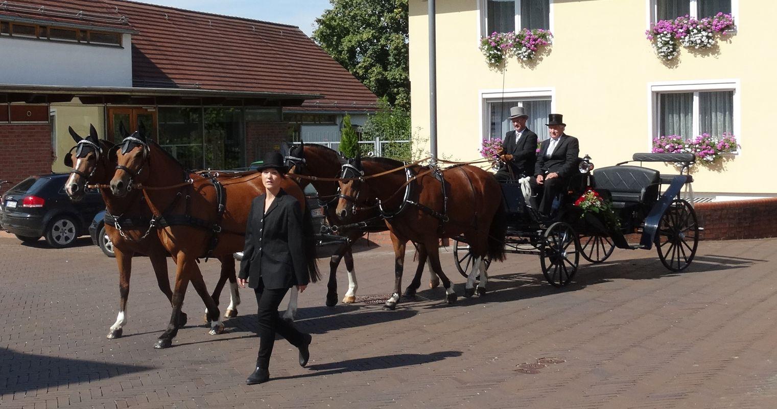 strasser-kutsche4.jpg